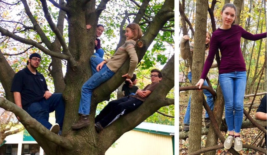 A number of kids balanced in trees