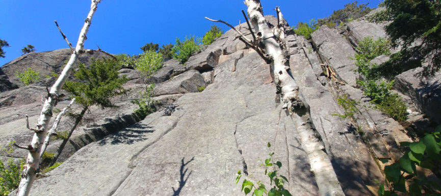 View up the side of a cliff in the Adirondacks, NY